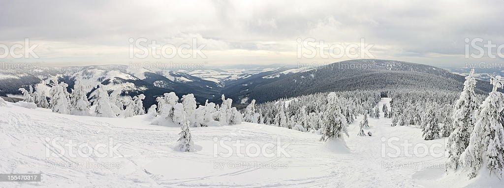 Panorama on the Snieznik Mountain slope stock photo