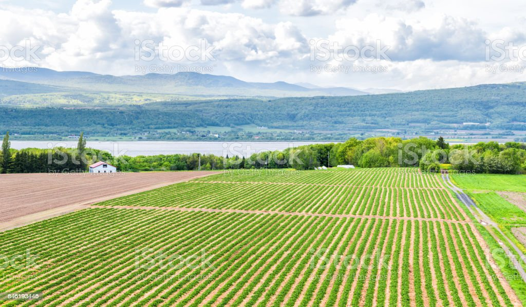 Panorama or panoramic aerial view of farmland in Ile D'Orleans, Quebec, Canada, plowed field, furrows, land, farm, house, barn, shed, Saint Lawrence river, hills, mountains and village stock photo