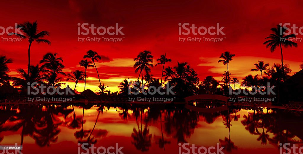 Panorama Orange and red sunset over sea beach with palms royalty-free stock photo