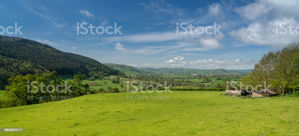 Panorama over typical english or welsh farming country - Royalty-free Agricultural Field Stock Photo