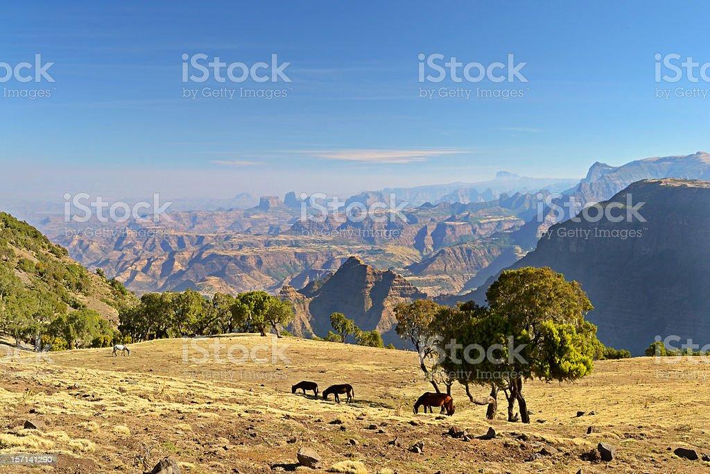 Panorama, Simien Mountains, Ethiopia stock photo