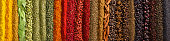 Indian spices and herbs as background. Seasonings texture for website header.