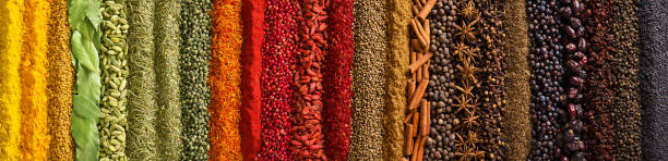 Panorama spices and herbs for food labels. Seasonings and flavors background Indian spices and herbs as background. Seasonings texture for website header. allspice stock pictures, royalty-free photos & images