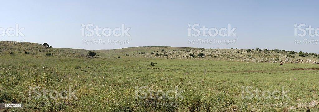 Panorama. Table-land. royalty-free stock photo