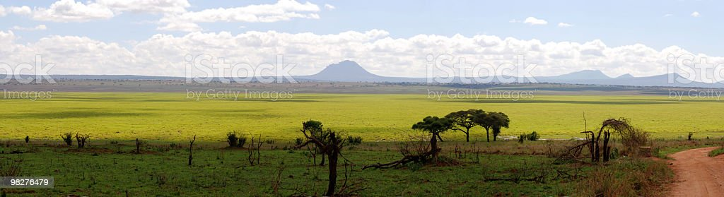 Panorama Tarangire National Park, Tanzania, East Africa royalty-free stock photo