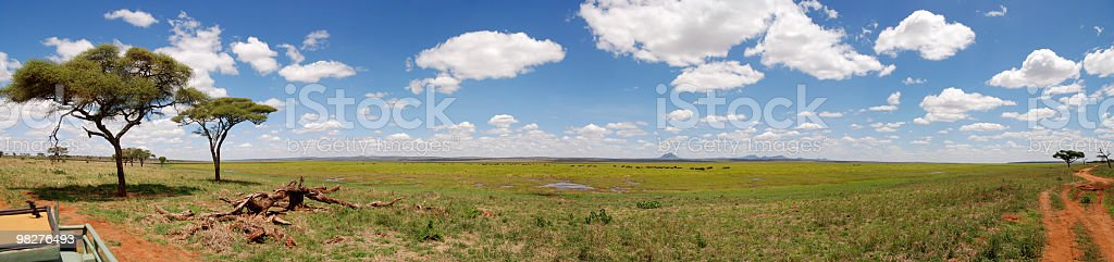 XXL panorama Tarangire National Park, Tanzania, East Africa royalty-free stock photo