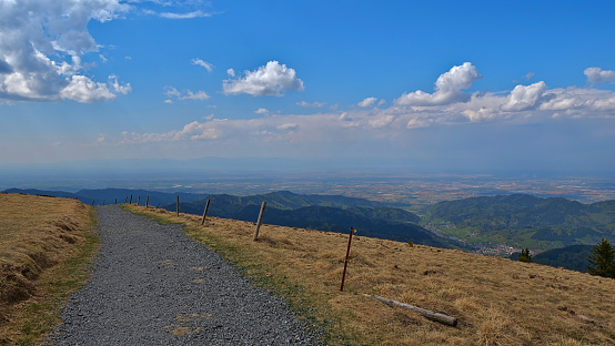 Panorama view from top of Belchen, one of the largest mountains in Black Forest, Baden-Wuerttemberg, Germany, in western direction over Rhine valley with road.