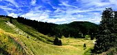 View from the stoisser alm in the Babarian alp with bright blue spy and cows in the meadow . Sunny summer day with bright colors