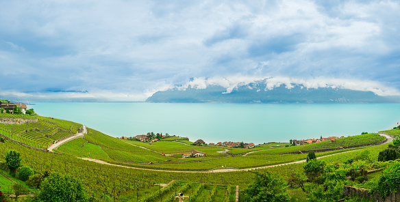 panorama view of famous  vineyard , Lavaux ,chexbres