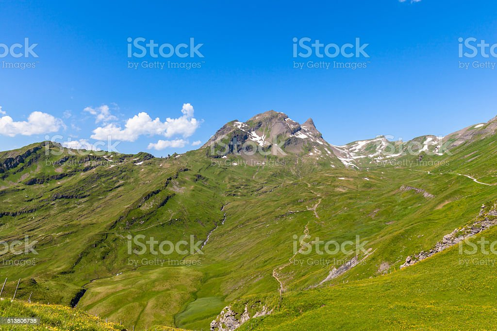 Panorama view of the Alps at Grindelwald First stock photo