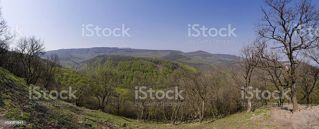 Panorama view with forests and mountains royalty-free stock photo