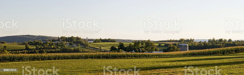Panorama with Four Silos and a Church in Autumn royalty-free stock photo