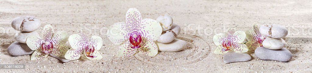 Panorama with orchids and zen stones in the sand stock photo
