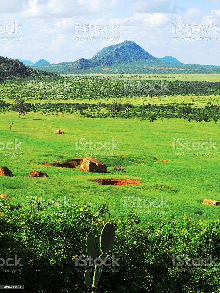 Panoramablick von einer Lodge in Tsavo West - Kenia stock photo