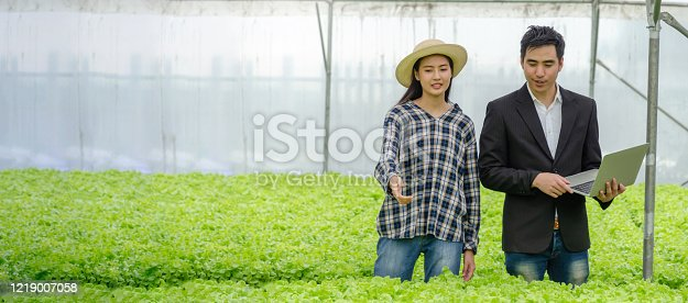1047941544 istock photo Panoramic banner. agronomist and woman asian farmer talking and checking fresh green oak lettuce salad, organic hydroponic vegetable with laptop in greenhouse garden nursery farm, agriculture concept 1219007058