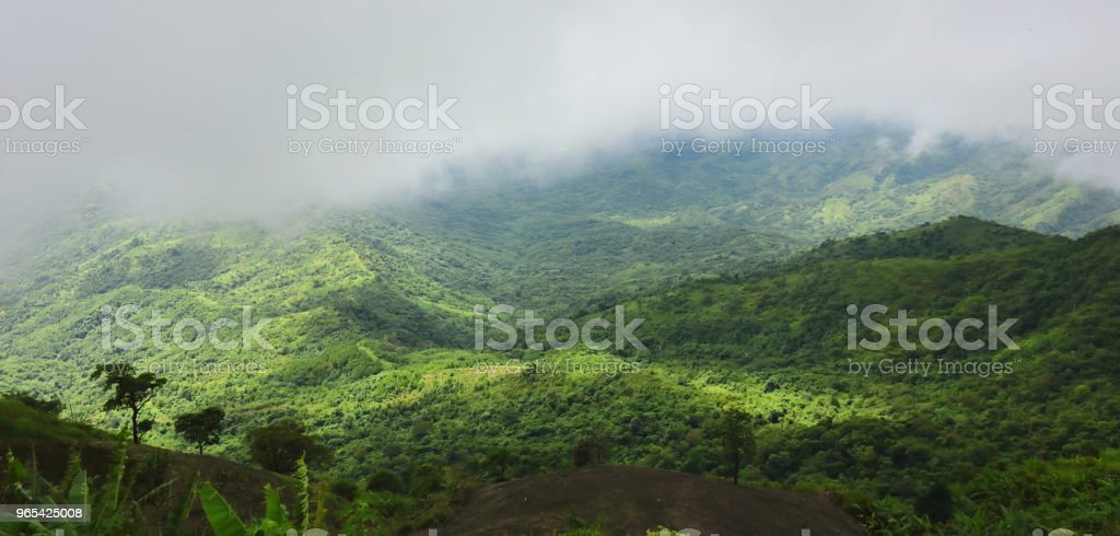 Panoramic beautiful natural scenery of mist over green mountain. royalty-free stock photo