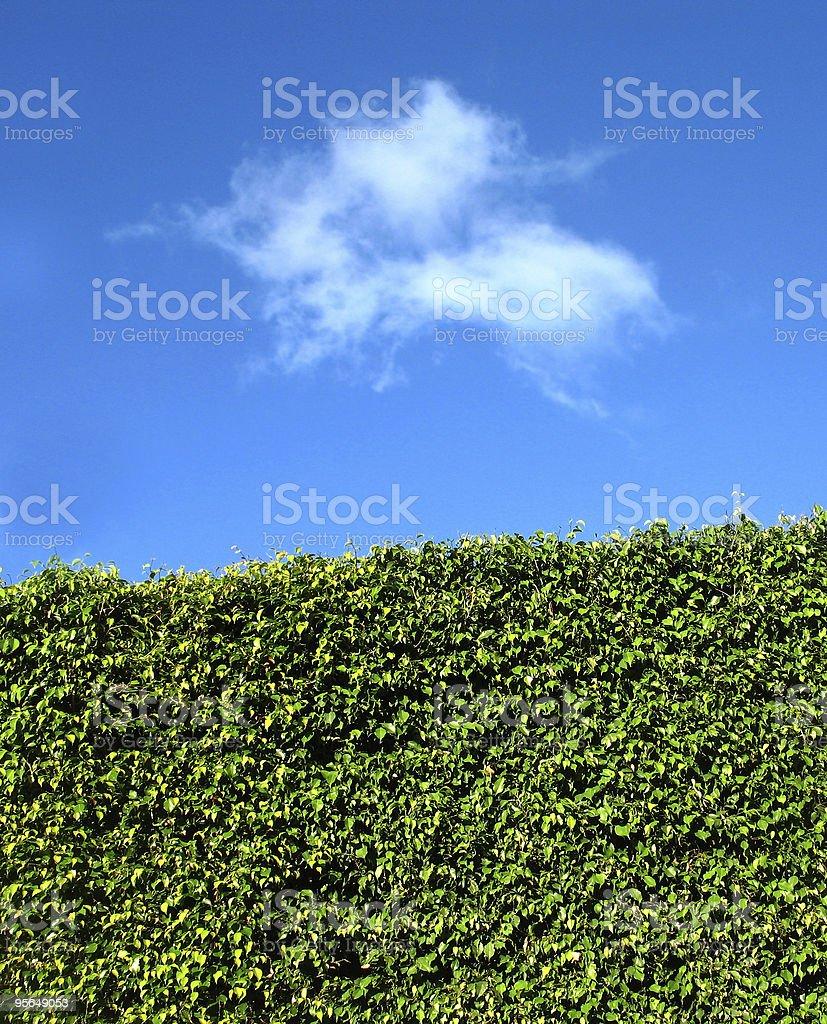 panoramic beautiful vertical landscape royalty-free stock photo