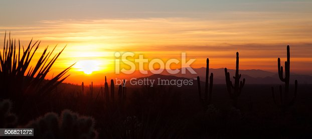 Silhouettes of cacti and mountains during sunset in Arizona USA.
