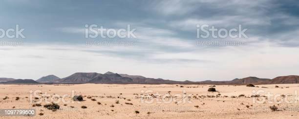 Photo of Panoramic empty desert background