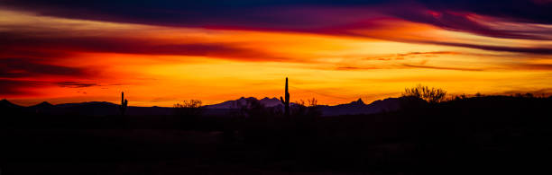Panoramic image of a sunset over the Sonoran stock photo