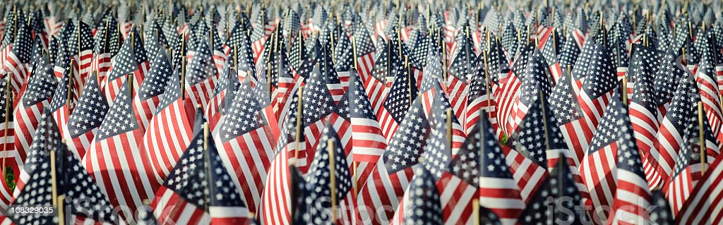 Panoramic image of an array of Memorial Day flags royalty-free stock photo