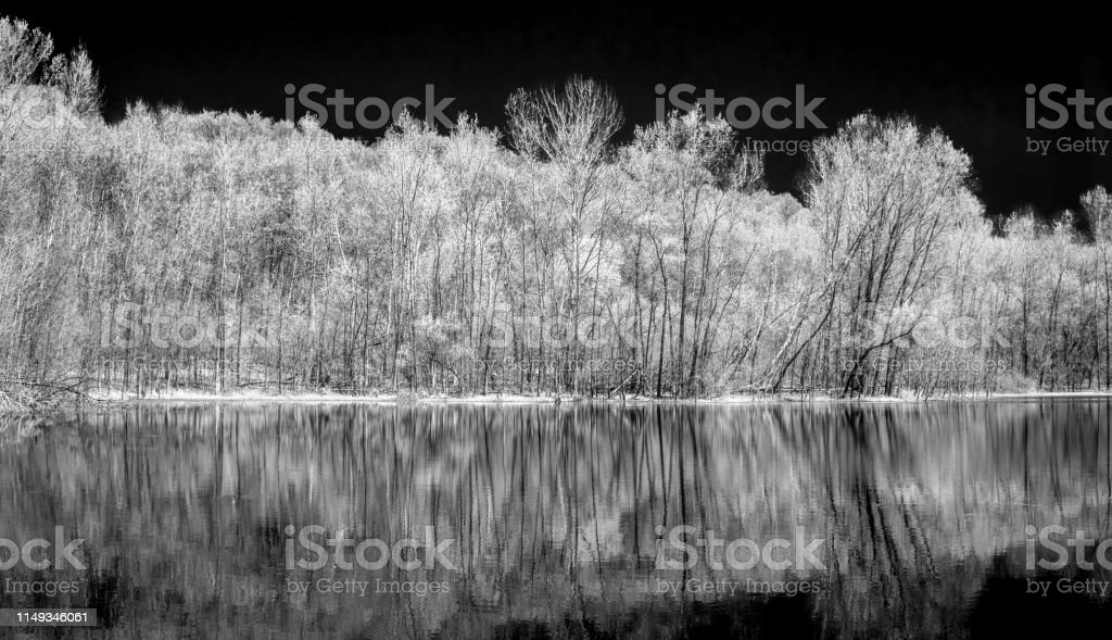 Black and white infared image of water, sky, and trees panorama.