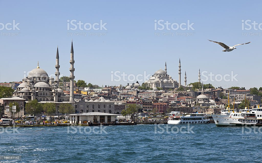 Panoramic Istanbul royalty-free stock photo