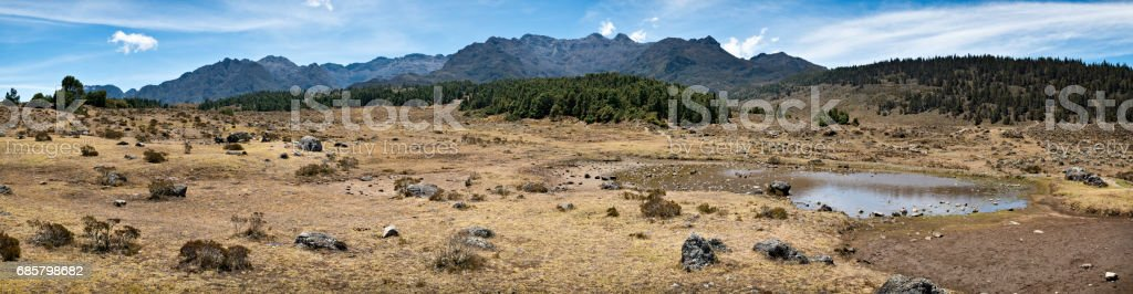 Panoramic landscape Cordillera de Los Andes seen from Mucubaji lagoon, Merida state, Venezuela stock photo