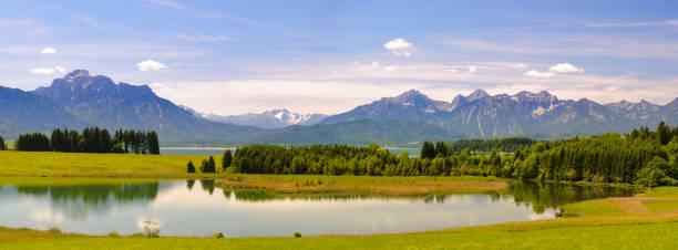 panorama-landschaft in bayern mit alpen-gebirge und see forggensee - allgäu stock-fotos und bilder