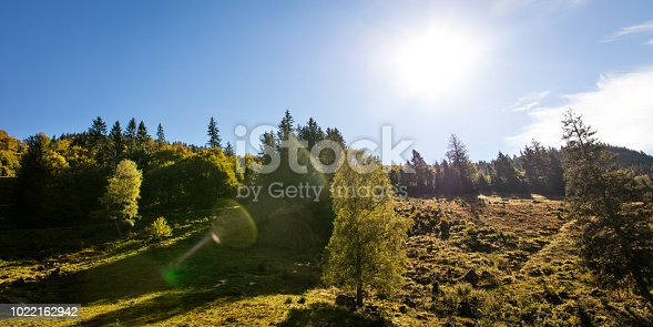 Panoramic landscape in the black forest, Germany