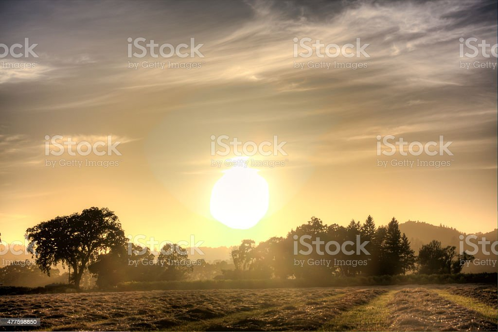 Panoramic Landscape Sunset stock photo