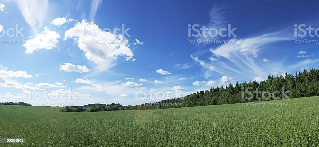 Panoramic Landscape with Green Field and Blue Sky royalty-free stock photo