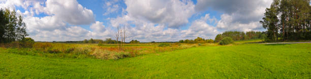 Panoramic landscape with meadows under cloudy sky stock photo