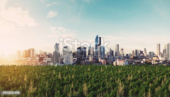 Panoramic modern city in sunrise with green forest