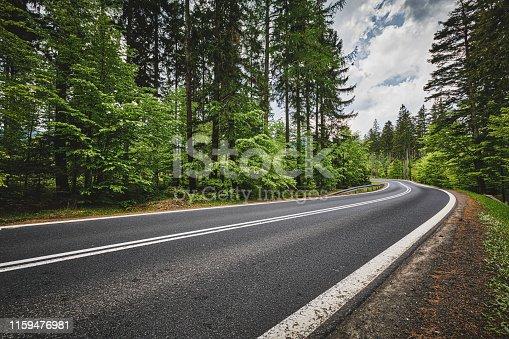 winding road in a green forest in the Karkonosze (Krkonoše) Mountains (Giant Mountains)