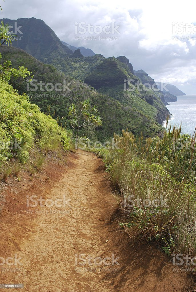 Panoramic Na Pali Coast in Kauai, Hawaii. royalty-free stock photo