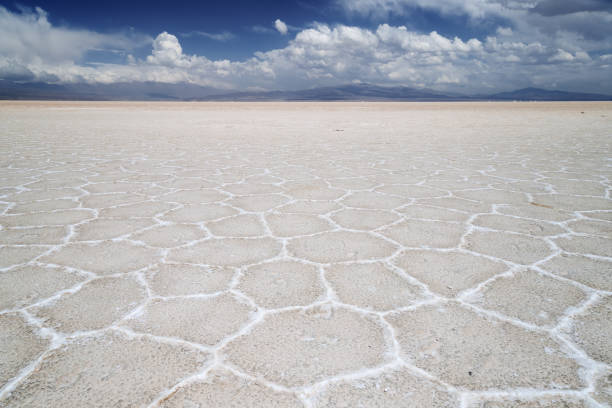 Panoramic of cracked ground with mountains in the background in the salt flats in the Salinas Grandes in Jujuy, Argentina Panoramic of cracked ground with mountains in the background in the salt flats in the Salinas Grandes in Jujuy, Argentina lake bed stock pictures, royalty-free photos & images