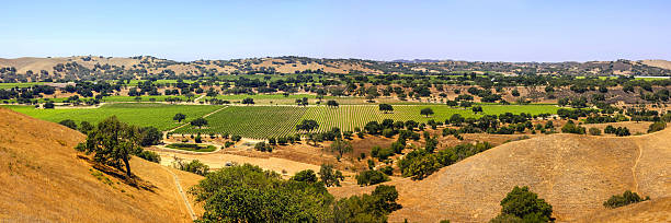 Panoramic of Foxen Canyon in Santa Barbara County, California stock photo