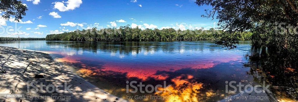 Panoramic of  Pasimoni river, Rio Negro, Venezuela stock photo