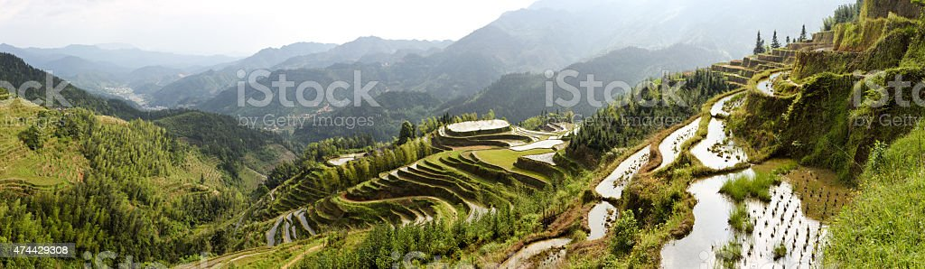 Panoramic of rice terraces on high mountains stock photo