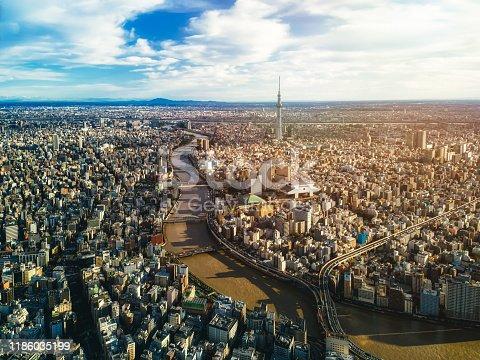 1131743616 istock photo Panoramic of Tokyo city 1186035199