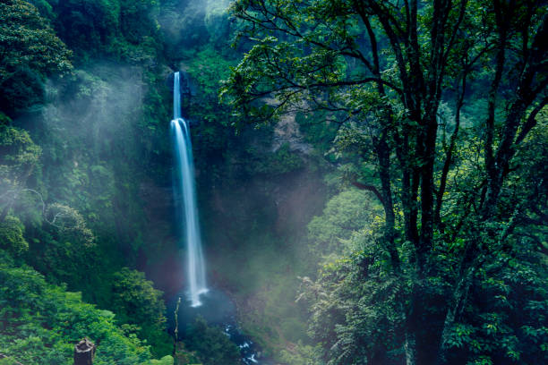 Panoramic Pelangi waterfall in the tropical forest stock photo
