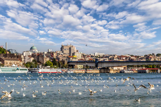 Panoramic Photograph of Belgrade Downtown Cloudy Skyline and Waterfront Area Viewed From Sava River Perspective Panoramic photograph of Belgrade waterfront, with St. Sava temple dome, Tourist nautical port, and Belgrade downtown cloudy skyline, with flock of flying river gulls and wild ducks, captured from Sava river perspective – Belgrade, Serbia, Central-Southern Europe. belgrade serbia stock pictures, royalty-free photos & images