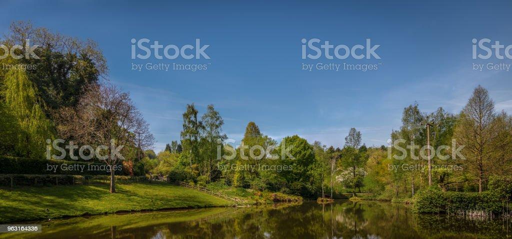 Panoramic photograph of Bodenham Arboretum II. stock photo