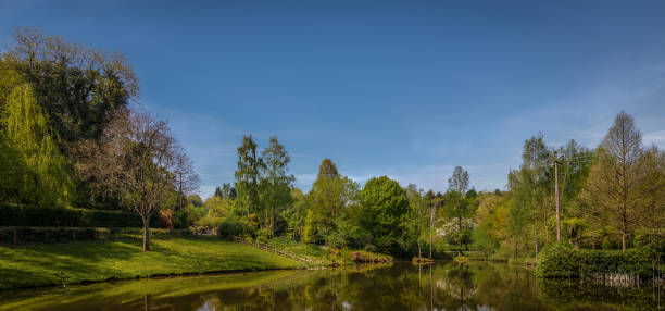 Panoramic photograph of Bodenham Arboretum II. stock photo