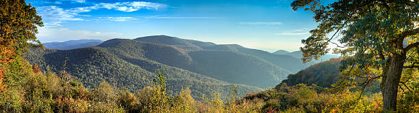 Panoramic picture of Blue Ridge Mountains The morning Autumn sun shines on the Blue Ridge Mountains bringing out the brilliant reds and oranges of the deciduous trees. Photo taken on the Skyline Drive in Shenandoah National Park. appalachian mountains stock pictures, royalty-free photos & images