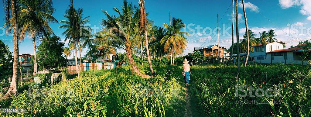 Panoramic picture of Guyana coastal plains stock photo