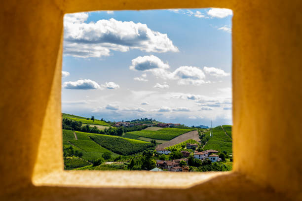 Panoramic point of the Langhe-Roero hills (Neive,Cuneo, Piedmont, Italy). stock photo