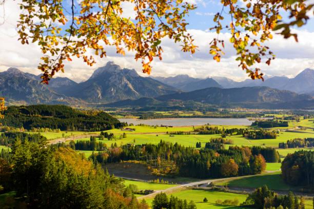 panorama-szene mit see hopfensee und gebirge in der region allgäu in bayern - allgäu stock-fotos und bilder