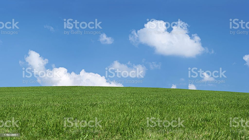 Panoramic spring landscape 46MPix XXXXL size - meadow, blue sky royalty-free stock photo